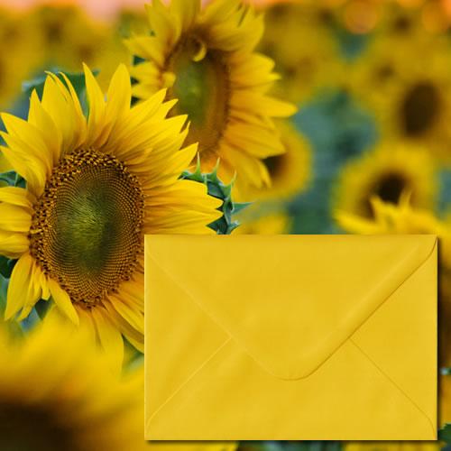 Sunflower Yellow Colour Envelopes